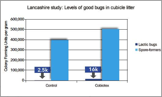 Cobiotex sixfold (ie, 600%) increase in lactic bugs and 25%-plus increase in friendly spore-formers